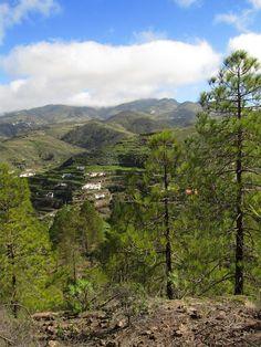 View from Tamadaba National Park, Gran Canaria.