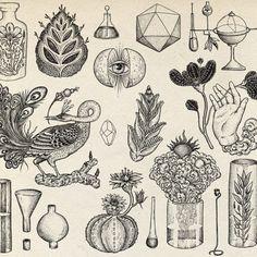 Line work for perfumer Barnabe Fillion. (at Stoke Newington)