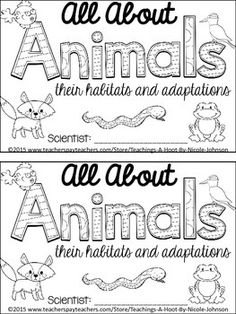 nice cool awesome All About Animals NGSS mini-book. Primary Science, Kindergarten Science, Elementary Science, Science Classroom, Teaching Science, Science Activities, Science Ideas, Preschool, Science Curriculum