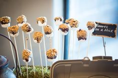 Camping Themed Baby Shower - S'mores