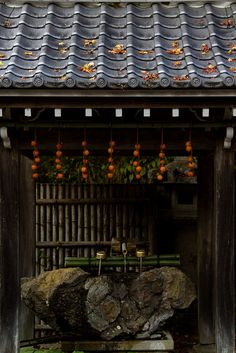 Kyoto, Japan - I love the roof in this temple, it's reminiscent of stylized wind gusts or waves.
