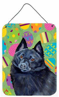 Schipperke Easter Eggtravaganza Aluminium Metal Wall or Door Hanging Prints