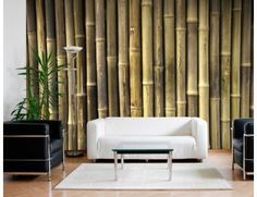 "Mural ""Bamboo Wall"". A wallpaper mural from Muralunique.com. http://www.muralunique.com/bamboo-wall-12-x-8-366m-x-244m.html"