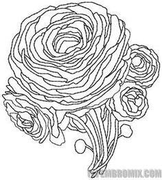 Peony Flower coloring page Super
