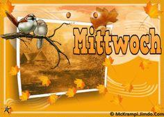 McK Mittwoch´s  GB Animiert  mit BBCode bei  http://mckrampi.jimdo.com/g%C3%A4stebuchbilder-jappy-bildergalarie/jappy-gb-bilder/mittwoch/