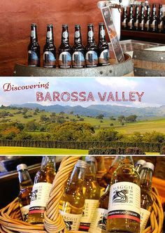 Barossa Valley comes to mind when thinking of Australia Food and Wine. Discover the rich history and culture on a food and wine tour rich.