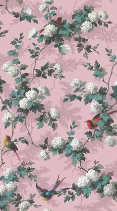Heritage Bird Print by The Vintage Collection - Pink - Wallpaper : Wallpaper Direct Floral Print Wallpaper, Vintage Floral Wallpapers, Vintage Flowers Wallpaper, Pretty Wallpapers, Flower Wallpaper, Wall Wallpaper, Pattern Wallpaper, Wallpaper Designs, Live Wallpapers