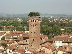 climbed this tower a few times and what a view from the top!  So many terra cotta roofs and multi-colored laundry to see .... *sigh