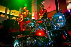 Uma moto por dia: Dia 39 – Harley-Davidson FatBoy Customizada | Osvaldo Furiatto Fotografia e Design