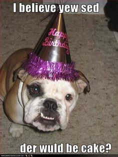 Happy Birthday Bulldog @Jen Rochester