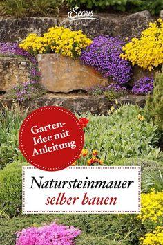 Wir haben eine einfache Anleitung für eine Steinmauer für den Garten für Sie zusammengestellt. Plus: Welche Pflanzen in ihren Spalten und Fugen am besten gedeihen. #steinmauerselberbauen #natursteinimgarten #gartengestaltung