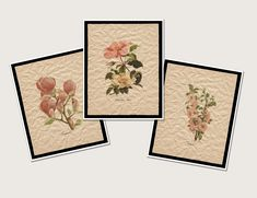 Pink Floral Gallery Wall Art Prints, Set of 3 Botanical Prints, Farmhouse Decor Collection