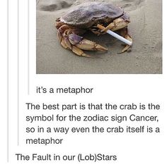 The Fault in Our (Lob)Stars
