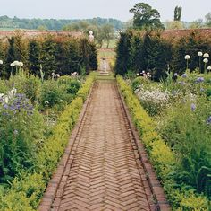 Herringbone-brick path lined with purple Darwin tulips and tall Mont Blanc alliums | Stella McCartney's English countryside garden, photo by Bruce Weber