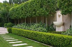 A landscape garden plan is only a starting point. Here you might like to check out some of our city garden design examples to get some inspiration. Formal Garden Design, Backyard Garden Design, Small Backyard Landscaping, Garden Landscape Design, Backyard Patio, Hedges Landscaping, Garden Hedges, Topiary Garden, Formal Gardens