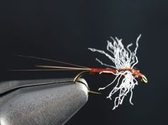 Fly Tying the Rusty Spinner Fly