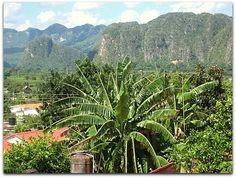 Vista de los Mogotes y el parque de Viñales desde la terraza. Vinales, Vineyard, Mountains, Nature, Travel, Outdoor, Terrace, Fences, Entryway