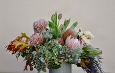 Muted Autumn tones of blues & golden browns - hydrangea, king protea, banksia, disbuds, tulips in a muted blue pot. #natives #protea #kingprotea #banksias #autumnflowers #richflowers #tulips #hydrangea #impact #nativefloristperth #nativeflowersperth #daisyhillflowers