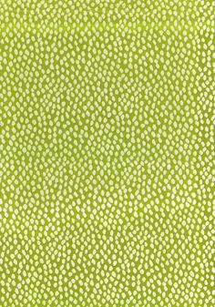 Thibaut - Anna French - AW1390   Pattern SPOT ON   Printed Fabrics  Collection Aria  Colorway Citron