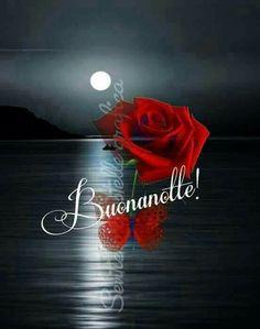 Buonanotte Good Night Love Images, Good Night Image, Good Afternoon, Good Morning, Good Night Flowers, Italian Greetings, Italian Life, Good Night Wishes, Mood Quotes