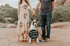 """182 Likes, 9 Comments - Megan Henry (@meganhenryphoto) on Instagram: """"The cutest mini engagement session there ever was ☺"""" engagement photo shoot with dog in the desert and sign that says my humans are getting married"""