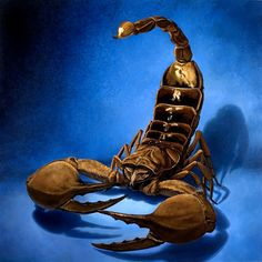 Scorpion arachnid oil painting by Jessa Huebing-Reitinger