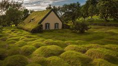 Hofskirkja, a turf church in Hof, Iceland