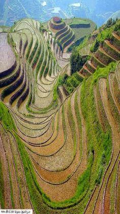 Village in Yemen:::: pinterest.com/... ::::