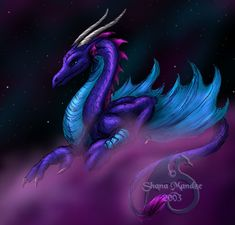 Midnight Dragon