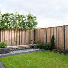 Garden Yard Ideas, Garden Projects, Pergola Patio, Backyard Landscaping, Landscape Design, Garden Design, Garden Drawing, Garden Inspiration, Home Deco