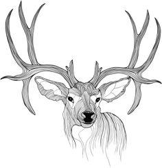 Deer Head Vector Animal Illustration For Tshirt Clipart vectoriel 450587715