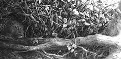 Charcoal Drawing Realistic drawing brambles and roots Color Pencil Sketch, Pencil Art, Black Pencil, Realistic Pencil Drawings, Charcoal Drawings, Doodle Drawings, Drawing Sketches, Grass Drawing, Tree Illustration