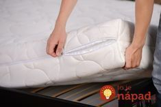 Mattresses for latex allergy sufferers Are you allergic to latex mattress Mattress Cleaning, Best Mattress, Mattress Covers, Clean Mattress, Bed Bug Remedies, Top 10 Home Remedies, Bed Bug Trap, Reuse Plastic Bags, Les Microbes