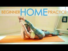 Beginner Yoga Strength Basics, 15 Minute Practice with Kino - YouTube