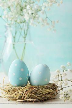 Spring - Easter Eggs in Robin Blue