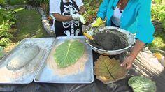 Leaf Casting | Volunteer Gardener