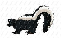 Skunk Drawings Related Keywords & Suggestions - Skunk Drawings ...