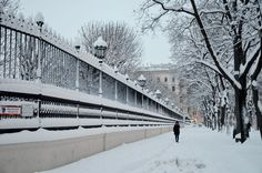 Schnee in Wien Visit Austria, Sight & Sound, Central Europe, Winter Time, Alps, Vienna, Vacation, Ring, Outdoor
