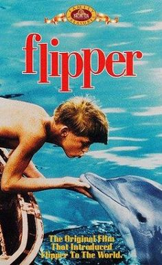 """Flipper"" TV show. I loved this show! Where are these shows at today? I rarely even turn on television anymore. Flipper was in color and we went to friends home to watch color TV. Way before cable or hd Childhood Tv Shows, My Childhood Memories, Best Memories, Sean Leonard, Mejores Series Tv, Tv Movie, Cinema Tv, Old Shows, Vintage Tv"