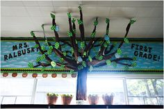 tree for classroom