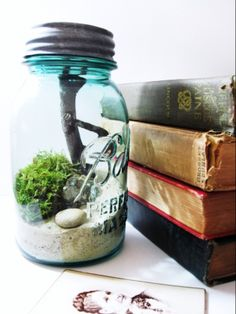 The Smell Of Rain - Vintage Ball Mason Jar Terrarium Mason Jar Terrarium, Moss Terrarium, Terrarium Ideas, Small Terrarium, Uses For Mason Jars, Ball Mason Jars, Diy Father's Day Gifts Easy, Diy Gifts, Smell Of Rain
