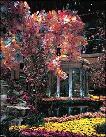 Conservatory at the bellagio is always changing and is a must see