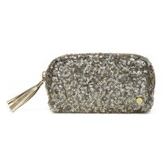 Love this bling bling material @SJTraveler pouch for its size and design