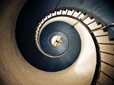 Photograph snail by Stefan Knierim on 500px