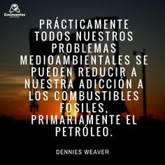 Prácticamente todos nuestros problemas medioambientales se pueden reducir a nuestra adicción a los combustibles fósiles, primariamente el petróleo. Dennies Weaver.