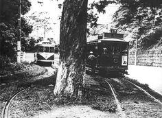 """Bonde Alto da Boa Vista  - 1965 Os dois bondes da foto serviram na última linha de bitola normal (1,435m) do Rio de Janeiro - a de número 67 - Alto da Boa Vista. A via pela qual trafegam foi construída fora da pista de rolamento, mas ainda assim o serviço foi encerrado em janeiro de 1968, privando a cidade de uma excelente atração turística. O bonde fechado foi apelidado pelo povo de """"Rita Pavone"""""""