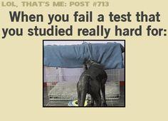 When you fail a test... (gif)