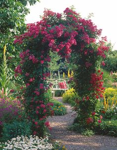 Rose Garden Rose arch with climbing roses: a treat for the eyes and the soul! Garden Arbor, Easy Garden, Garden Landscaping, Landscaping Software, Garden Trellis, Garden Arches, The Secret Garden, Classic Garden, Modern Garden Design