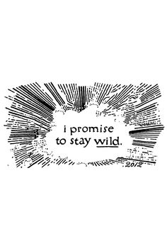 Stay Wild. by Dan Cassaro.