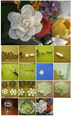 Gardenia Picture Tutorial